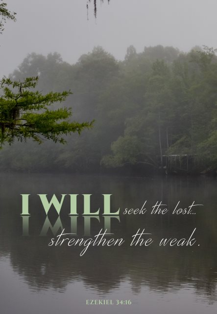 seek the lost strengthen the weak
