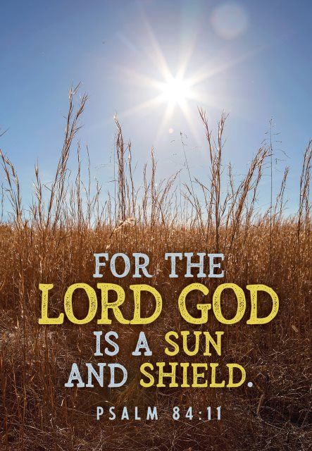 Lord is sun and shield