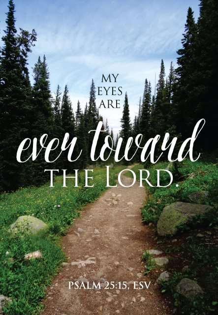 Eyes toward the Lord