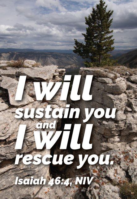 sustain rescue you