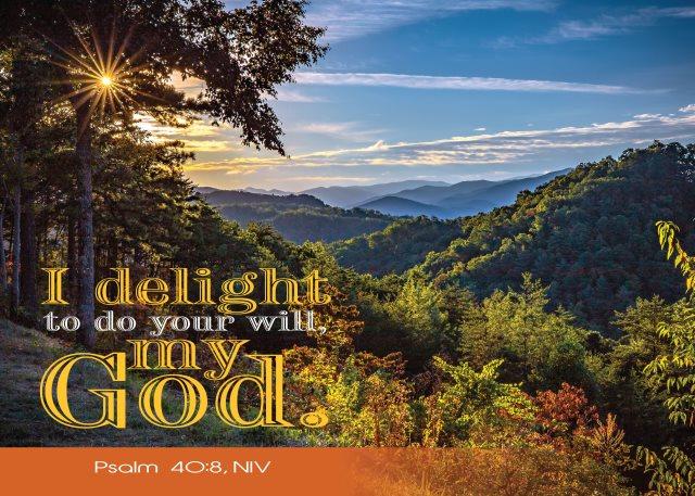 Delight God's will
