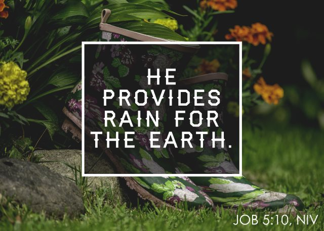 rain for the earth