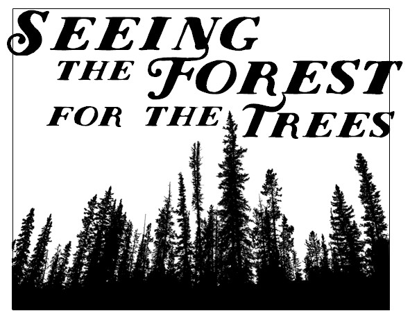seeing forest for the trees